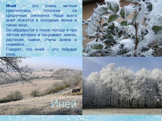 Иней  – это очень мелкие кристаллики, похожие на крошечные снежинки . Чаще всего иней ложится в холодные ясные и тихие ночи. Он образуется в тихую погоду и при лёгком ветерке и покрывает землю, растения, камни, стены домов и скамейки… Говорят, что иней – это твёрдая роса. Иней