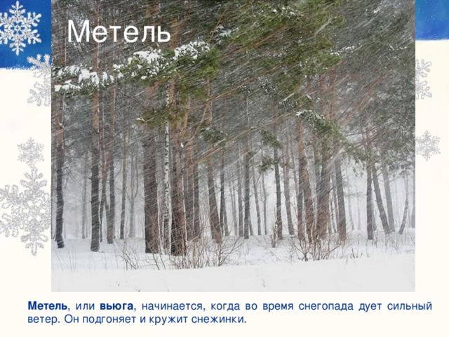 Метель Метель , или вьюга , начинается, когда во время снегопада дует сильный ветер. Он подгоняет и кружит снежинки.