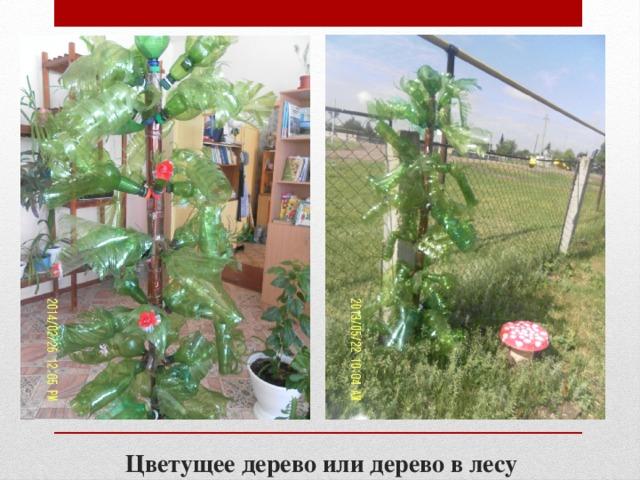 Цветущее дерево или дерево в лесу