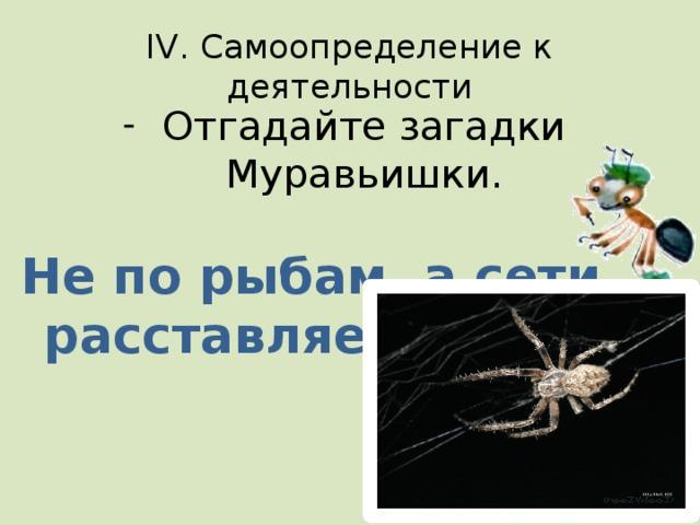 4. Укажите ряд, в котором указаны только объекты природы: а) б) в)