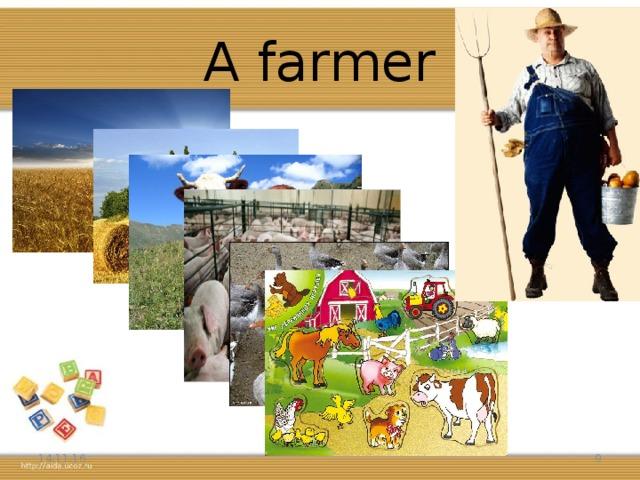 A farmer 14.11.16 5