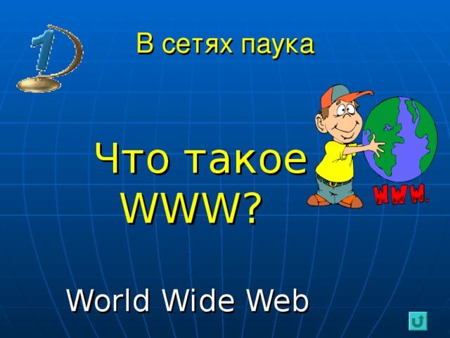В сетях паука  Что такое   WWW ?  World Wide Web