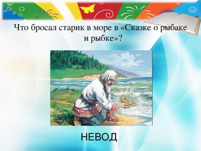 Что бросал старик в море в «Сказке о рыбаке и рыбке»? НЕВОД