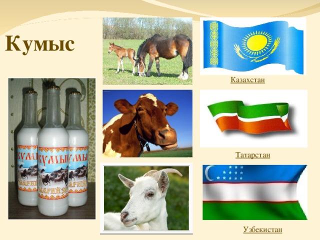 Кумыс Казахстан Татарстан Узбекистан