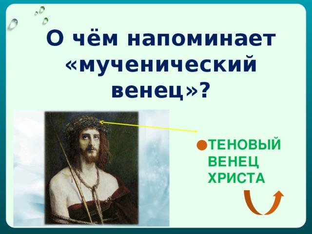 О чём напоминает «мученический венец»?
