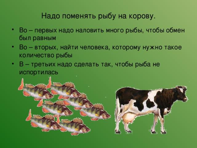 Надо поменять рыбу на корову.