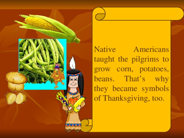 Native Americans taught the pilgrims to grow corn, potatoes, beans. That's why they became symbols of Thanksgiving, too.