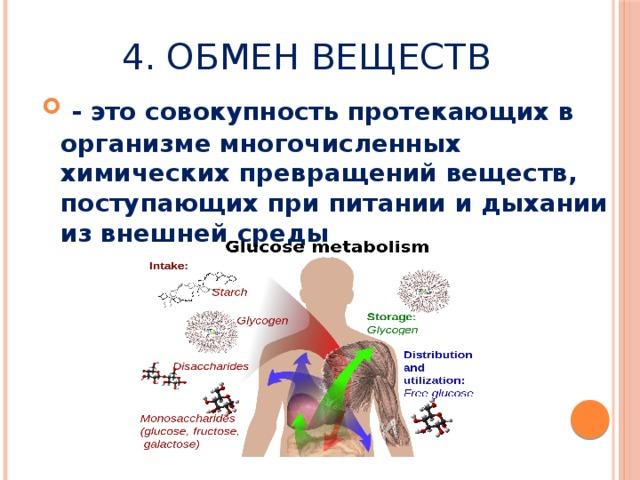 4. Обмен веществ