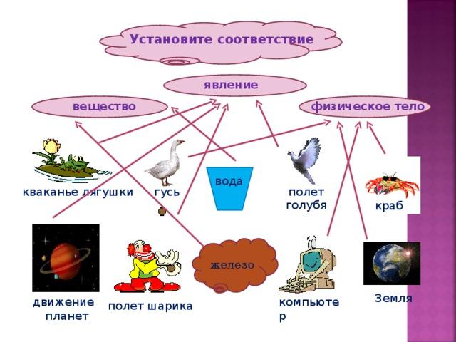 Установите соответствие явление физическое тело вещество вода гусь полет голубя кваканье лягушки краб железо Земля движение планет компьютер полет шарика