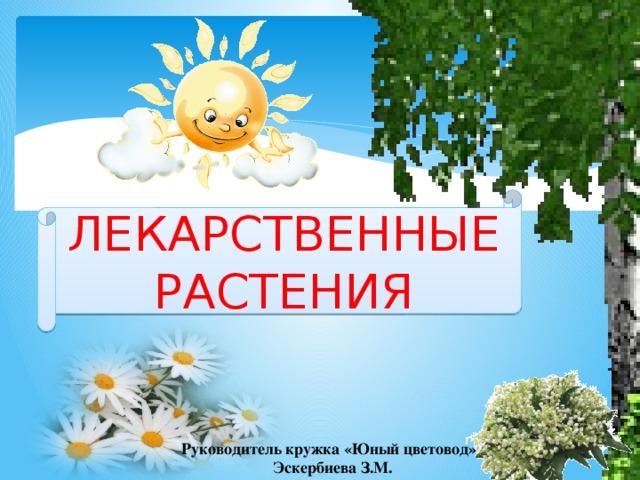 ЛЕКАРСТВЕННЫЕ РАСТЕНИЯ Руководитель кружка «Юный цветовод» Эскербиева З.М.