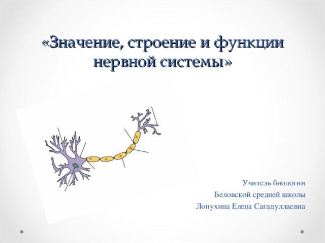 «Значение, строение и функции нервной системы»  Учитель биологии Беловской средней школы Лопухина Елена Сагадуллаевна