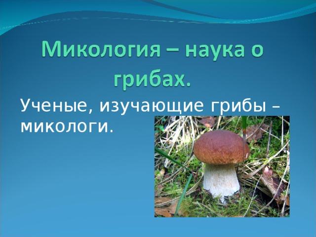 Ученые, изучающие грибы – микологи.