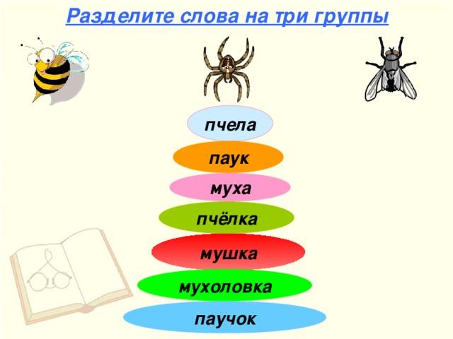 Разделите слова на три группы пчела паук муха пчёлка мушка мухоловка паучок