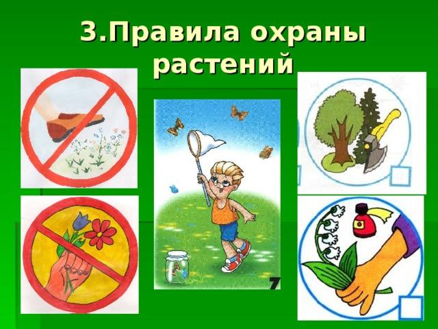 3.Правила охраны растений