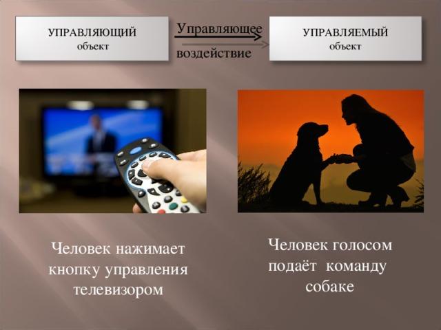 УПРАВЛЯЮЩИЙ  объект УПРАВЛЯЕМЫЙ объект Управляющее воздействие Человек голосом подаёт команду собаке Человек нажимает кнопку управления телевизором