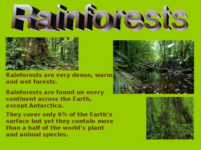 Rainforests are very dense, warm and wet forests. Rainforests are found on every continent across the Earth, except Antarctica. They cover only 6% of the Earth's surface but yet they contain more than a half of the world's plant and animal species.