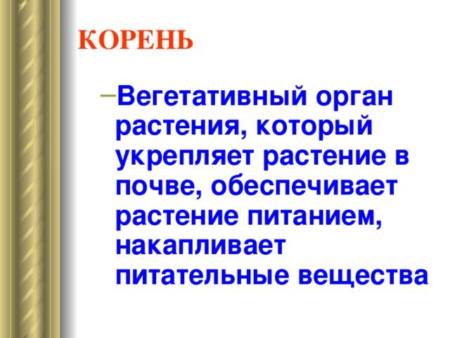 Презентация наглядных пособий Корень, типы корневых систем