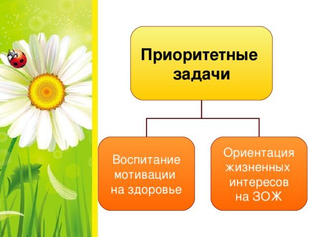 Приоритетные задачи Воспитание мотивации на здоровье Ориентация жизненных интересов на ЗОЖ