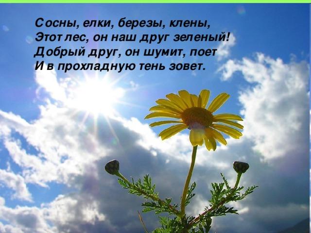 Сосны, елки, березы, клены, Этот лес, он наш друг зеленый! Добрый друг, он шумит, поет И в прохладную тень зовет.