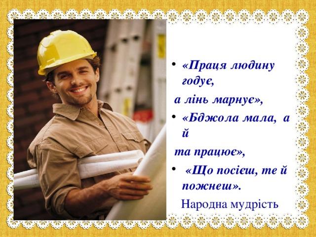 «Праця людину годує,  а лінь марнує», «Бджола мала,а й  та працює»,  «Що посієш, те й пожнеш».