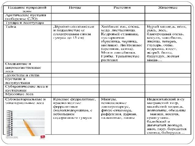 климатический пояс занимающий большую часть россии