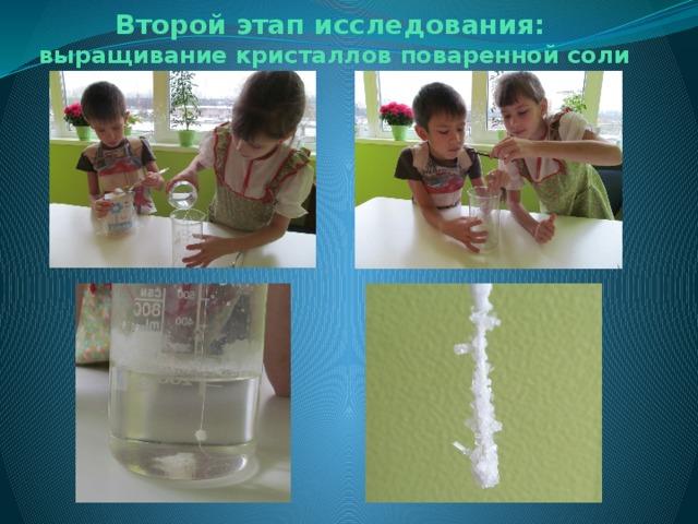 Второй этап исследования:  выращивание кристаллов поваренной соли