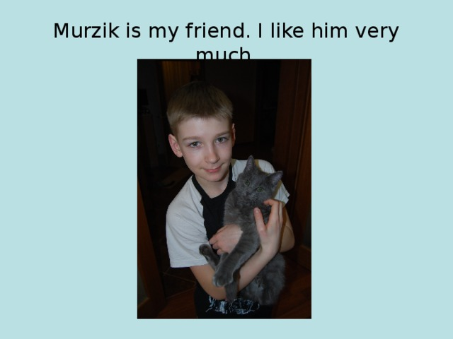 Murzik is my friend. I like him very much.