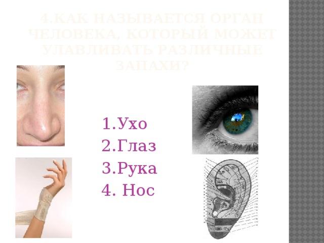 Ухо и глаз картинка