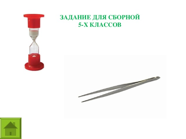 ЗАДАНИЕ ДЛЯ СБОРНОЙ 5-Х КЛАССОВ