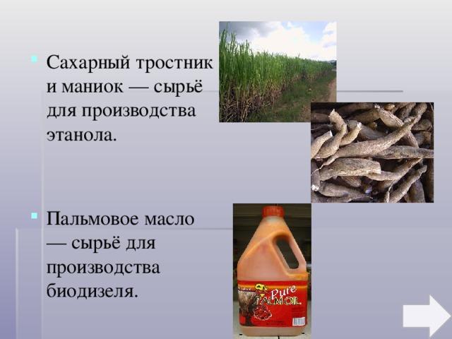 Сахарный тростник и маниок — сырьё для производства этанола. Пальмовое масло — сырьё для производства биодизеля.