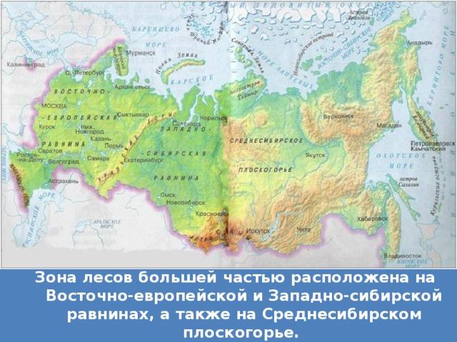 Зона лесов большей частью расположена на Восточно-европейской и Западно-сибирской равнинах, а также на Среднесибирском плоскогорье.