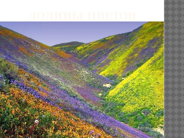 Долины цветов