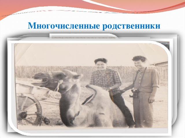 Многочисленные родственники Мацаковых.