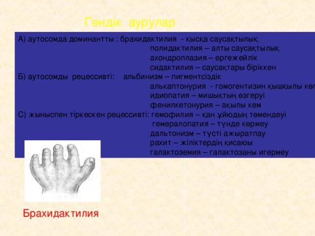 Гендік аурулар А) аутосомда доминантты : брахидактилия - қысқа саусақтылық  полидактилия – алты саусақтылық  ахондроплазия – ергежейлік  сидактилия – саусақтары біріккен Б) аутосомды рецессивті: альбинизм – пигментсіздік  алькаптонурия - гомогентизин қышқылы көп  идиопатия – мишықтың өзгеруі  фенилкетонурия – ақылы кем С) жыныспен тіркескен рецессивті: гемофилия – қан ұйюдың төмендеуі  гемералопатия – түнде көрмеу  дальтонизм – түсті ажыратпау  рахит – жіліктердің қисаюы  галактоземия – галактозаны игермеу Брахидактилия