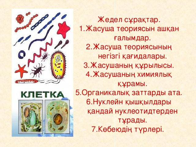 Жедел сұрақтар. 1.Жасуша теориясын ашқан ғалымдар. 2.Жасуша теориясының негізгі қағидалары. 3.Жасушаның құрылысы. 4.Жасушаның химиялық құрамы. 5.Органикалық заттарды ата. 6.Нуклейн қышқылдары қандай нуклеотидтерден тұрады. 7.Көбеюдің түрлері.
