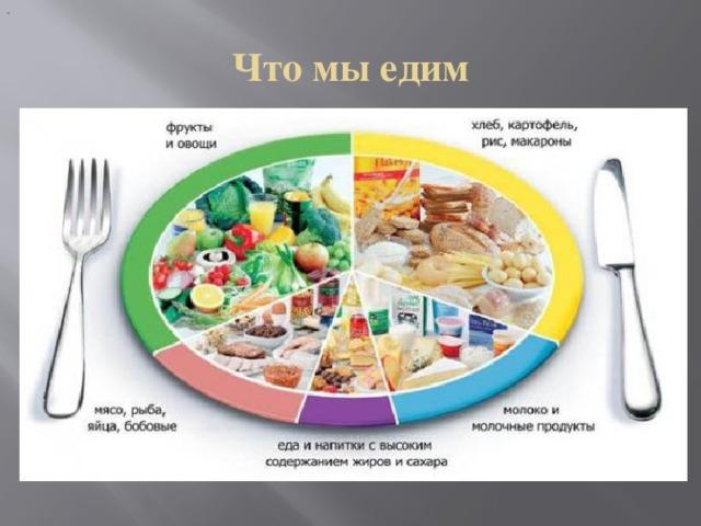 Что мы едим