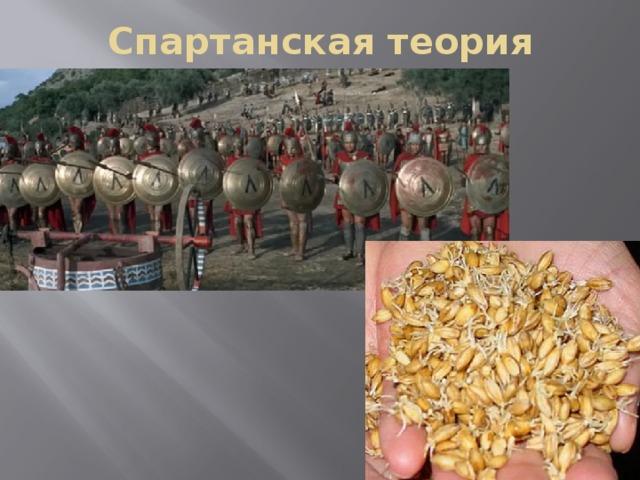 Спартанская теория