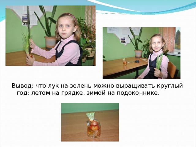 Вывод: что лук на зелень можно выращивать круглый год: летом на грядке, зимой на подоконнике.