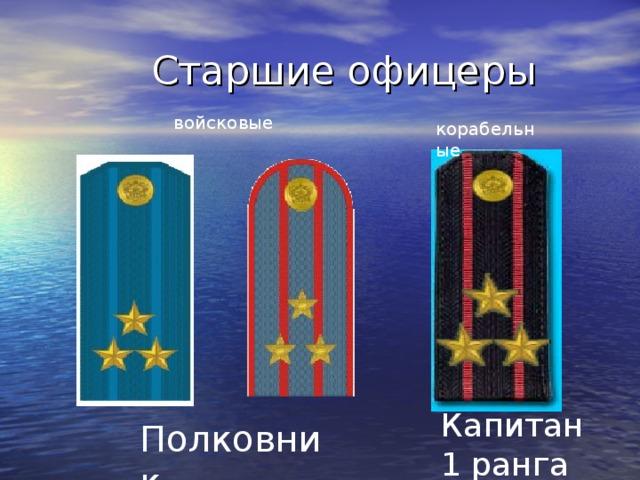 Старшие офицеры войсковые корабельные Капитан 1 ранга Полковник