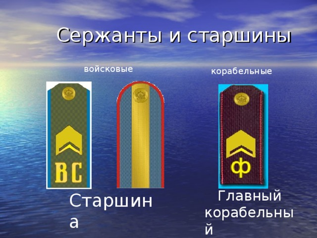 Сержанты и старшины  войсковые корабельные  Главный корабельный  старшина Старшина