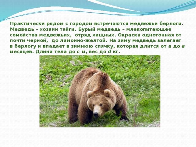 Практически рядом с городом встречаются медвежьи берлоги. Медведь – хозяин тайги. Бурый медведь – млекопитающее семейства медвежьих, отряд хищных. Окраска однотонная от почти черной, до лимонно-желтой. На зиму медведь залегает в берлогу и впадает в зимнюю спячку, которая длится от а до в месяцев. Длина тела до с м, вес до d кг.