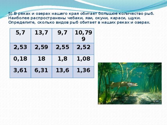 5) В реках и озерах нашего края обитает большое количество рыб. Наиболее распространены чебаки, язи, окуни, караси, щуки. Определите, сколько видов рыб обитает в наших реках и озерах. 5,7 2,53 13,7 2,59 0,18 9,7 10,799 2,55 18 3,61 2,52 6,31 1,8 1,08 13,6 1,36