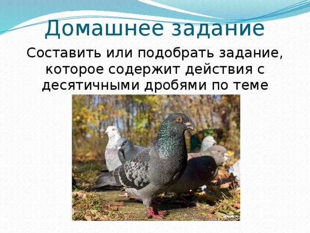 Домашнее задание Составить или подобрать задание, которое содержит действия с десятичными дробями по теме «Птицы нашего края»
