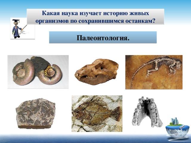 Какая наука изучает историю живых организмов по сохранившимся останкам? Палеонтология.