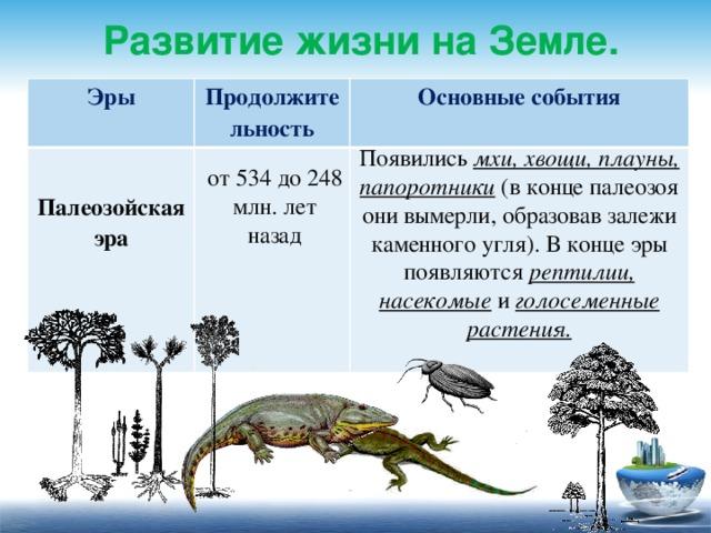 Развитие жизни на Земле. Эры  Продолжительность Основные события Палеозойская эра         Появились мхи, хвощи, плауны, папоротники (в конце палеозоя они вымерли, образовав залежи каменного угля). В конце эры появляются рептилии, насекомые и голосеменные растения. от 534 до 248 млн. лет назад