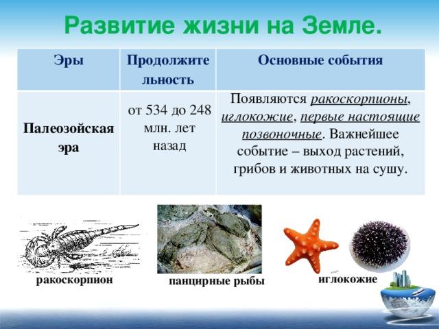 Развитие жизни на Земле. Эры  Продолжительность Основные события Палеозойская эра   Появляются ракоскорпионы , иглокожие , первые настоящие позвоночные . Важнейшее событие – выход растений, грибов и животных на сушу. от 534 до 248 млн. лет назад иглокожие ракоскорпион панцирные рыбы