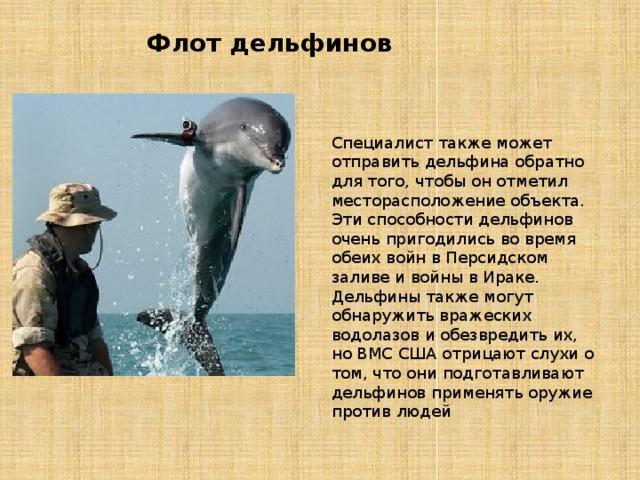 Флот дельфинов Специалист также может отправить дельфина обратно для того, чтобы он отметил месторасположение объекта. Эти способности дельфинов очень пригодились во время обеих войн в Персидском заливе и войны в Ираке. Дельфины также могут обнаружить вражеских водолазов и обезвредить их, но ВМС США отрицают слухи о том, что они подготавливают дельфинов применять оружие против людей