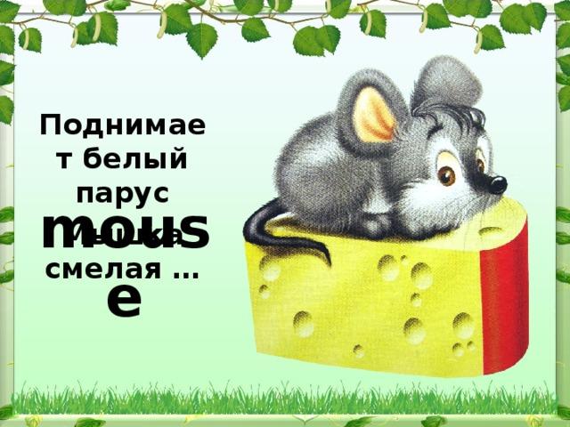 Поднимает белый парус Мышка смелая …  mouse