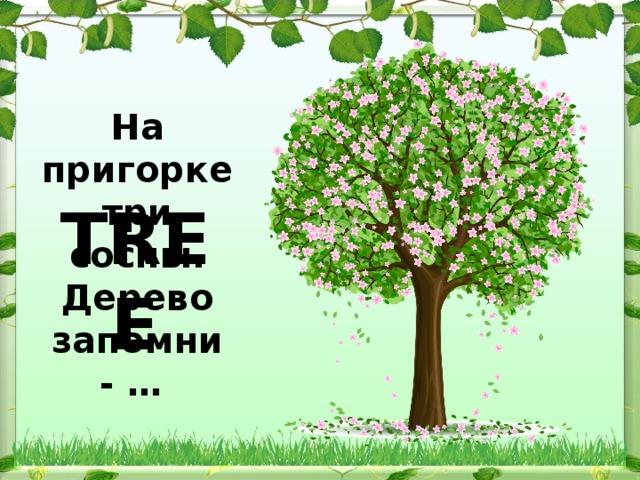 На пригорке три сосны. Дерево запомни - … TREE