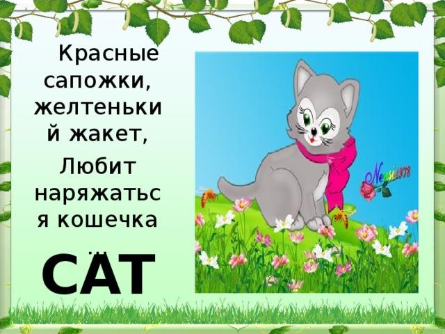 Красные сапожки, желтенький жакет, Любит наряжаться кошечка … CAT